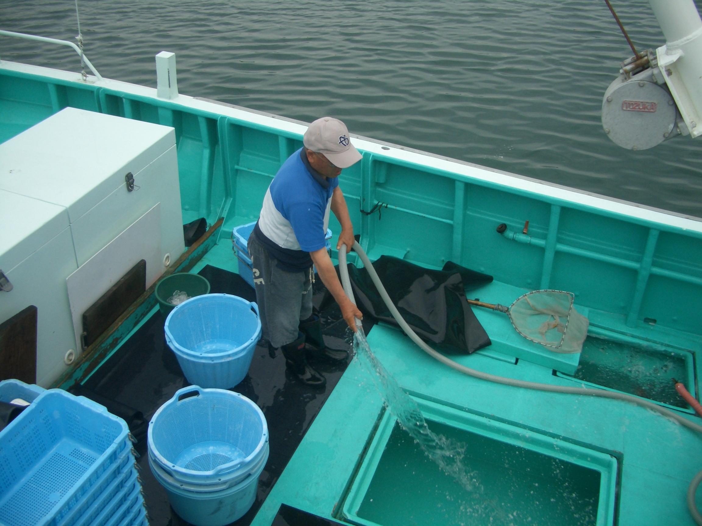 鯛、ヒラメ、メバル、五目釣りなら釣り船敬栄丸へ 豊かな漁場、茨城県日立市の川尻港で釣り体験を楽しめます。初心者安心の釣竿レンタルあり!